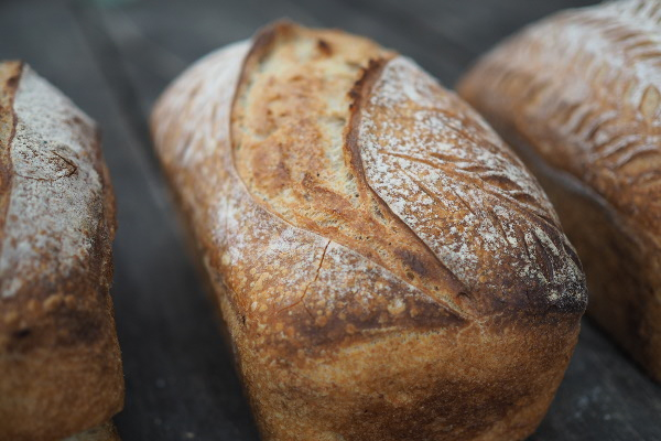 All About Sourdough