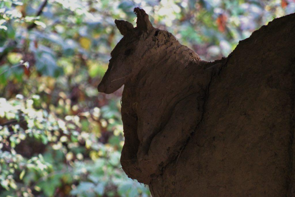 Rewilding Embercombe