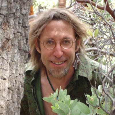 David Abram