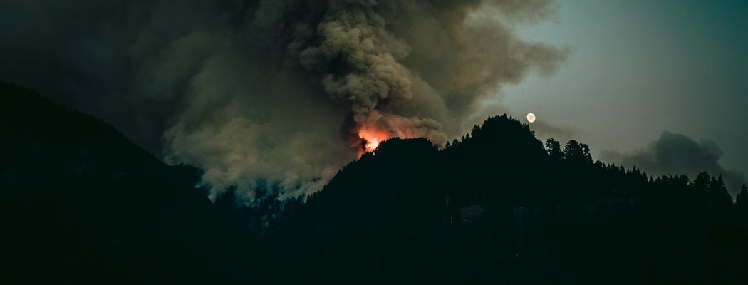 Dreaming the Wildfire