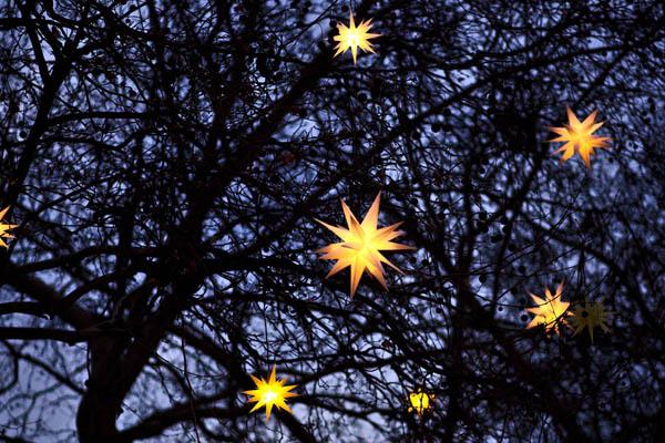 A Fistful of Stars - Celebrating Beltane online